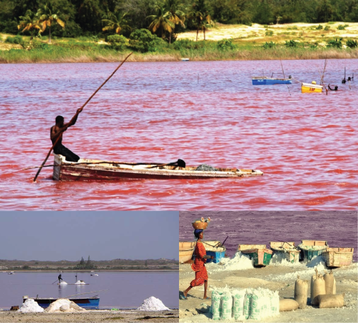 lac-rose-Senegal