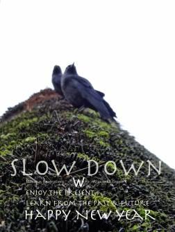 slow down for #wonderfulgreen winter 2018