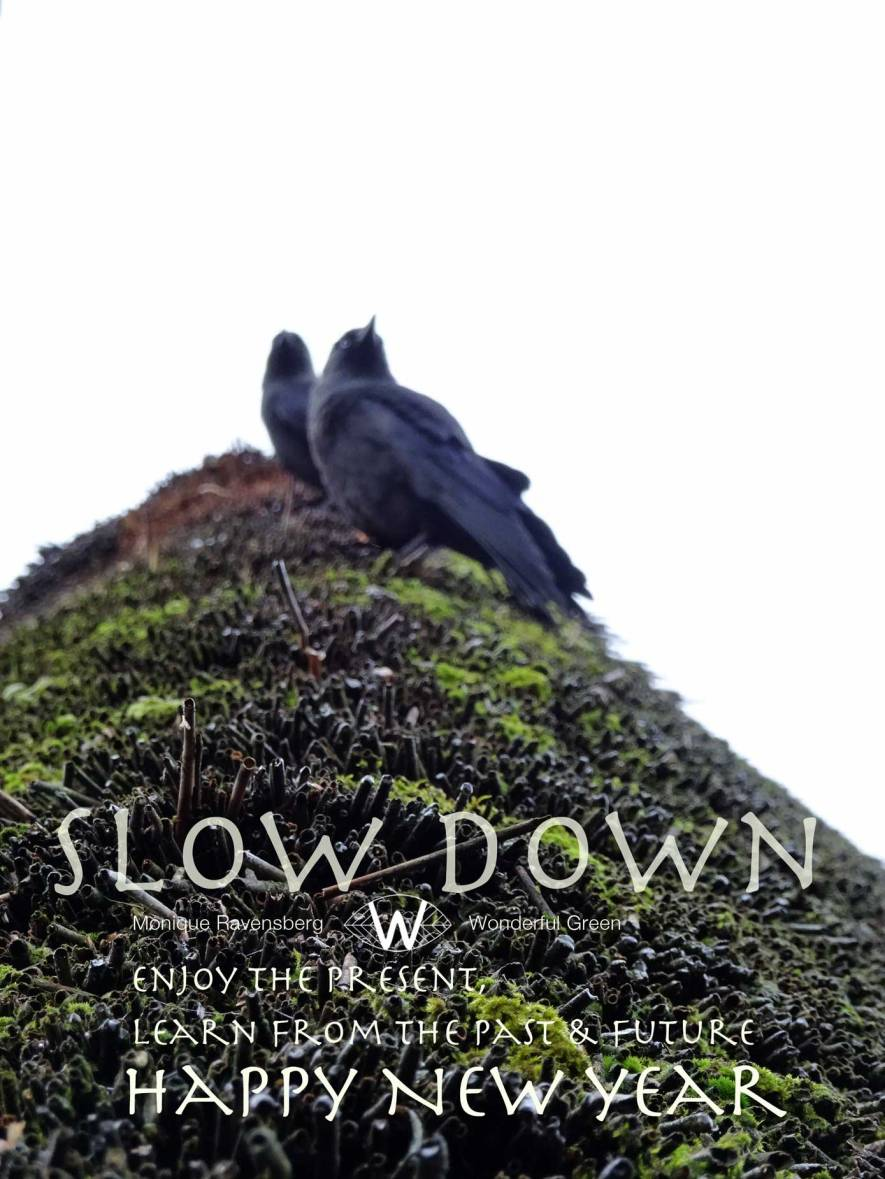 slow down for #wonderfulgreen winter 2018