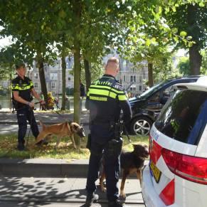 Vrijheid-20-augustus-2020-Den-Haag-dogs