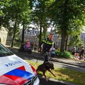 Vrijheid-20-augustus-2020--Den-Haag-dogs