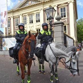 Vrijheid-20-augustus-2020-Den-Haag-police-horse