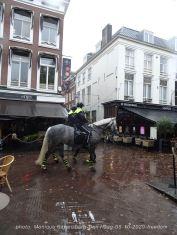 Freedom-Den-Haag-081020-police-horse