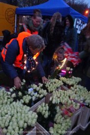 Freedom-Den-Haag-21-11-2020-roses