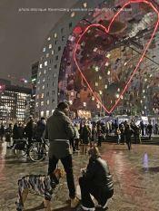 freedom-curfew-Rotterdam-22-1-21-alibi