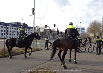 Freedom-stop-violence-The-Hague-horses