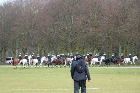 Freedom-21-03-14-The-Hague-horse-force