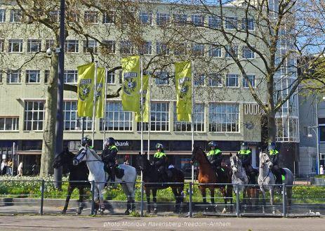 freedom-Arnhem-210427-horses