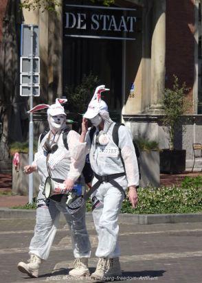 freedom-Arnhem-210427-rabbits