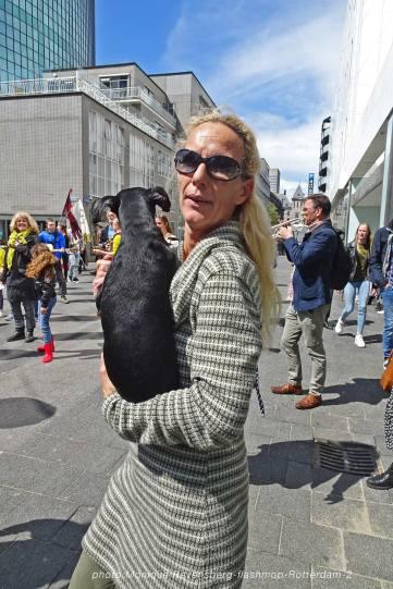 flashmop-210516-Rotterdam-dog