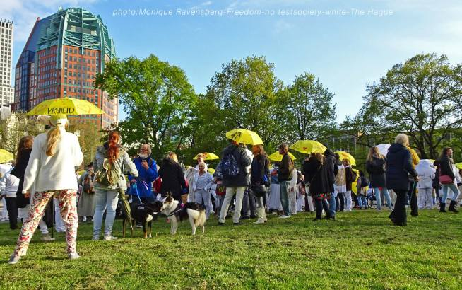 Freedom-210517-The-Hague-dogs