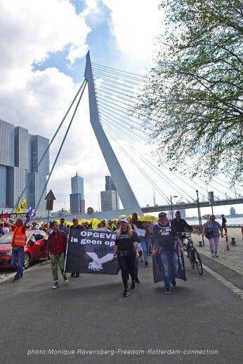 Freedom-210529-Rotterdam-Swan
