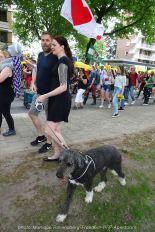 Freedom-210611-PFF-dog-walk