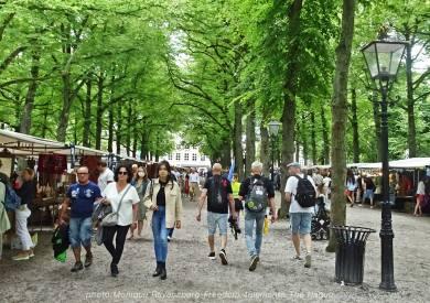 Freedom-210704-The-Hague-walk-market