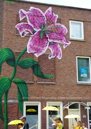 Freedom-210711-Rotterdam-South-lily