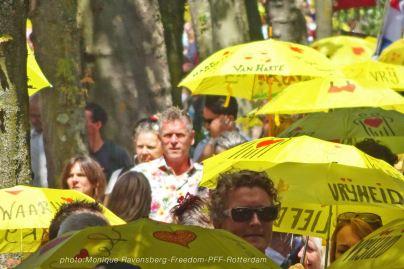 Freedom-210717-PFF-yellow
