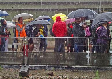 Freedom-210822-Antwerpen-rain-fall