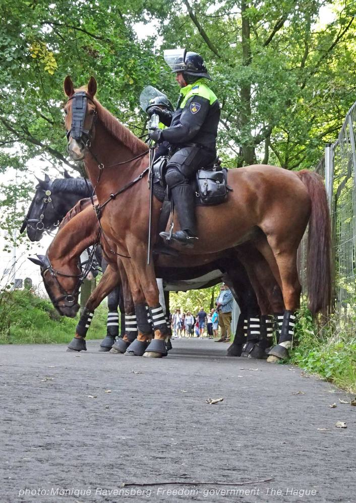 Freedom-210907-government-police-horses