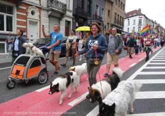 Freedom-210911-Brussel-dog2