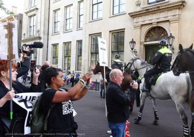 Freedom-210921-The-Hague-horse