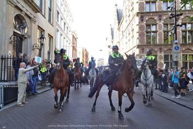 Freedom-210921-The-Hague-horse2